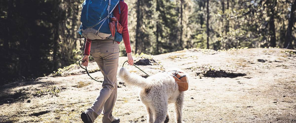 hiking with dog advice help