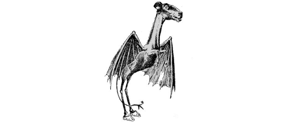 Jersey Devil Real Cryptids Explained